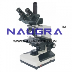 Microscopes Slides and Cameras
