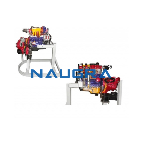Cut Section Model Of Four Cylinder Four Stroke Petrol Engine