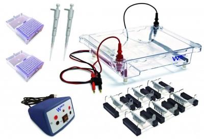 Electrophoresis Classroom Kit