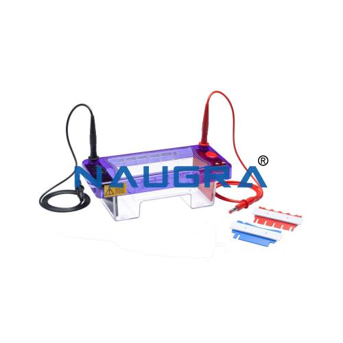 Educational Lab Gel Electrophoresis System