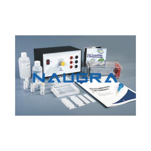 Biology Lab Electrophoresis Lab Station I