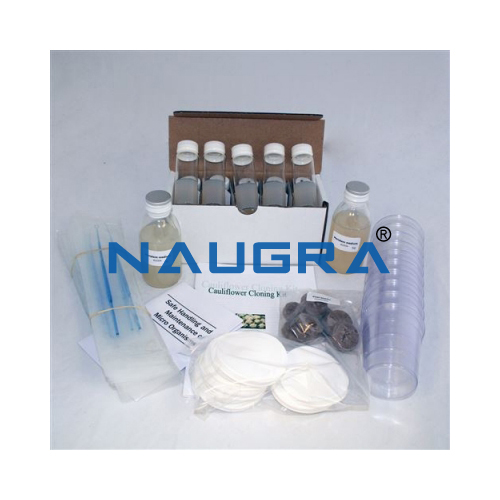 Biology Lab Cauliflower Cloning Kit