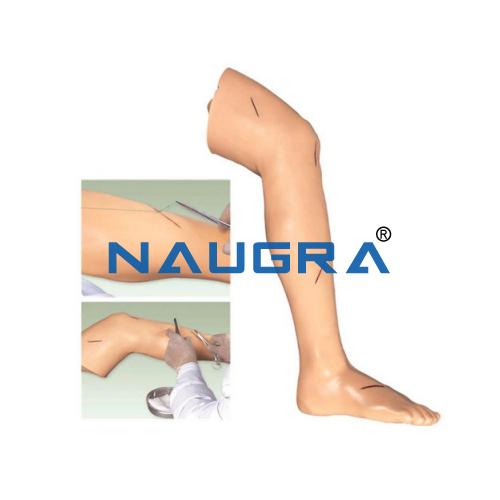 Surgical Suture Leg