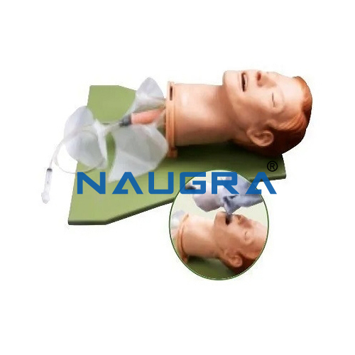 Multi Functional Airway Mangement Model
