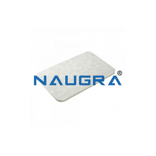 Biology Lab Dissection Replacement Pad Medium