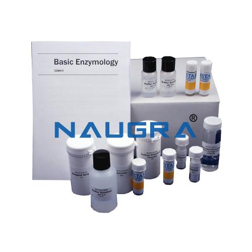 Biology Lab Basic Enzymology Kit