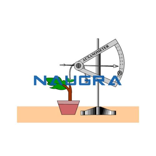 Educational Lab Auxanometer