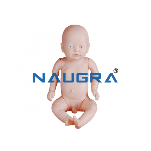 Newborn Intubation Baby Model