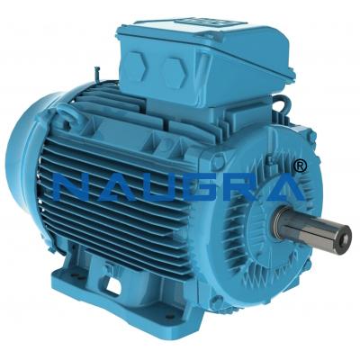 Energy Efficiency In Electric Motors
