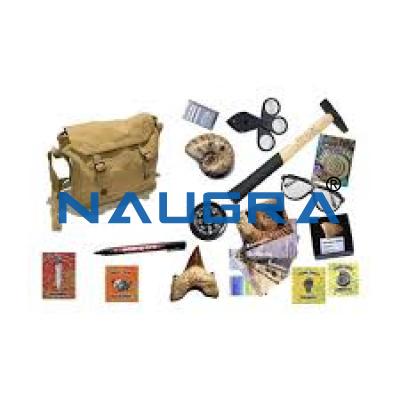 Naugra Fossil Hunt Kit