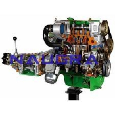 Chassis with Turbo Diesel Engine Cutaway