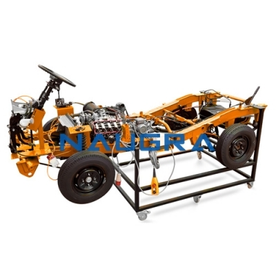Chassis Petrol Engines Cutaway for Automotive Lab