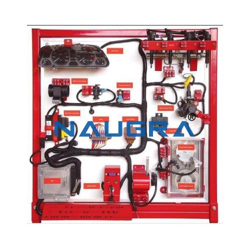 Diesel Fuel Supply System Training Board