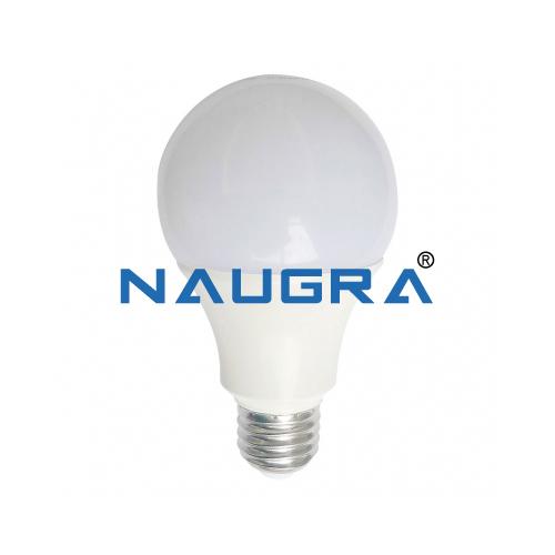 Educational Lab Battery Bulb